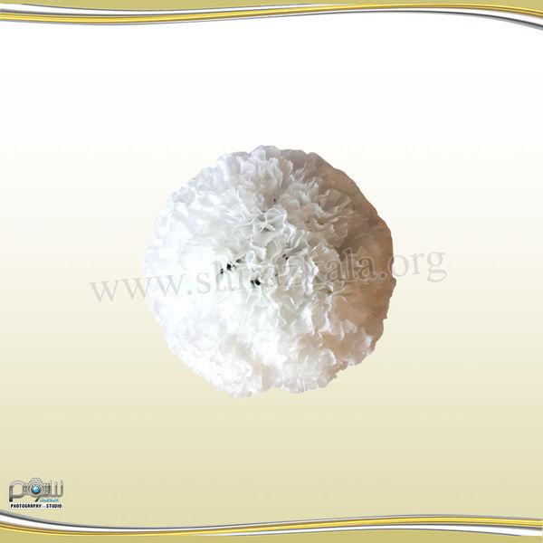 تصویر توپ گل میخک سفید کوچک