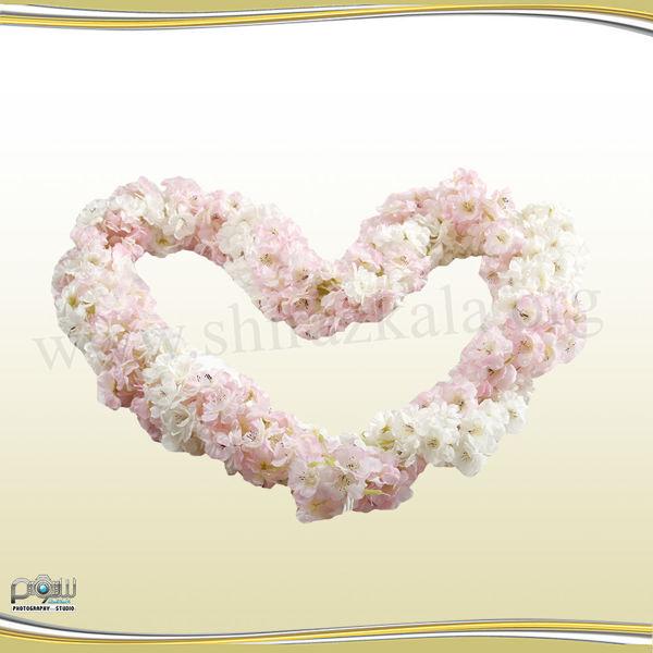تصویر ریسه شکوفه سیب